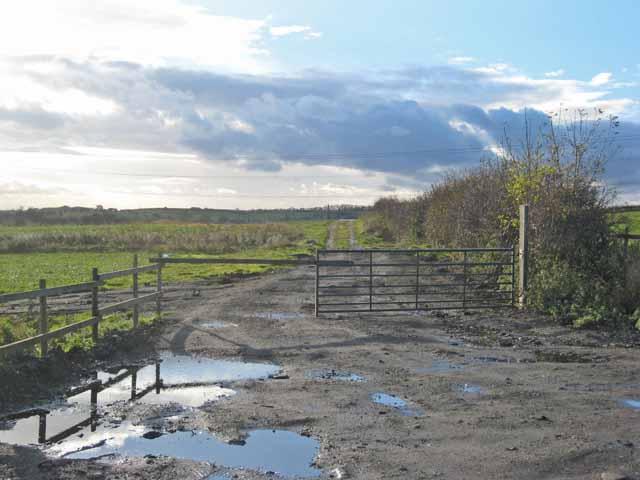 Old farm road, Brierton Moors