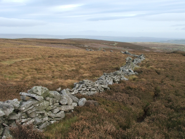 Drystone Wall near Cowstone Gill Bottom.