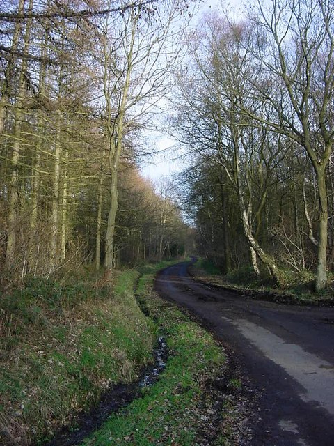 The road from Carr House