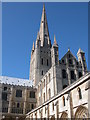 TG2308 : Norwich Cathedral by Philip Halling