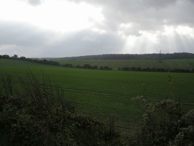 Fields south of Cowdown Lane