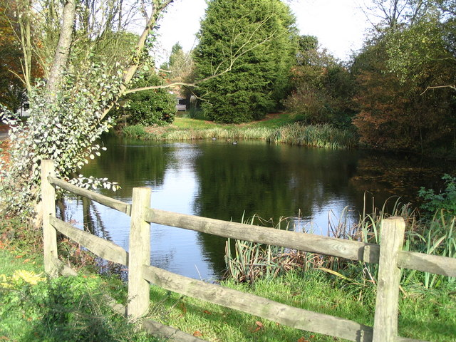 The pond at Cherry Green Farm