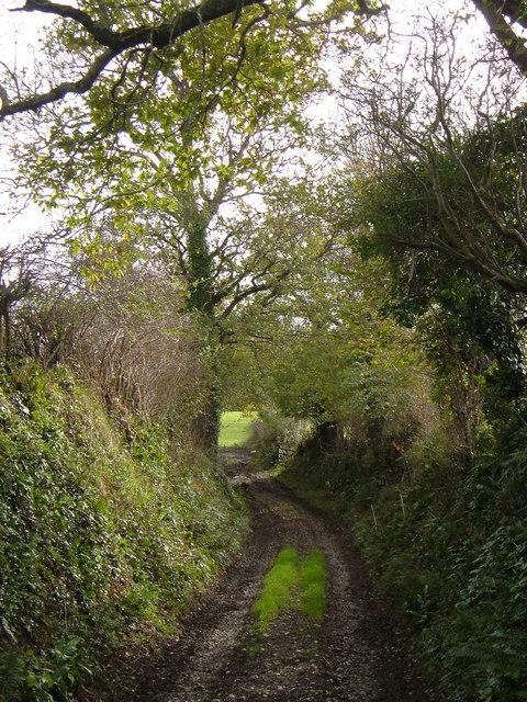Green lane near Spriddlestone