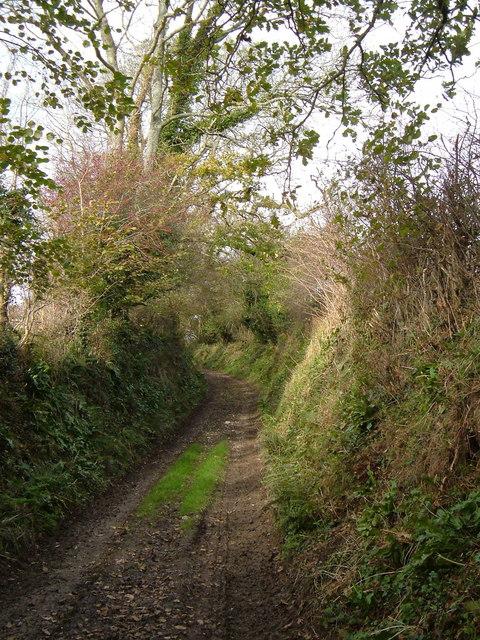Green lane to Spriddlestone