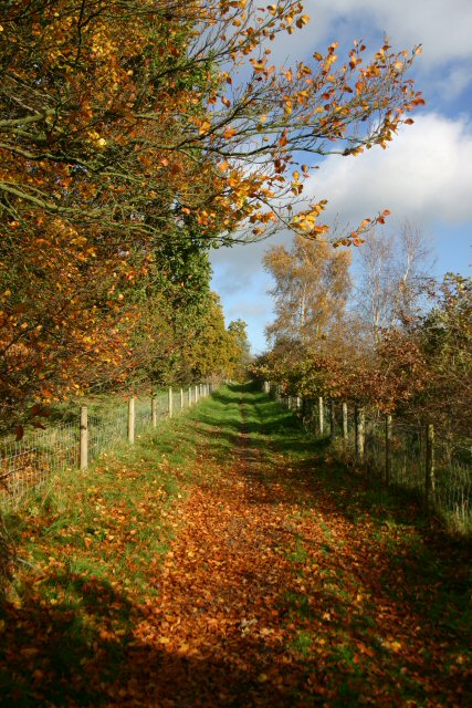 Byway to Thetford