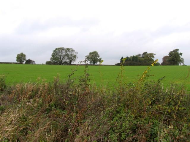 View towards Shangton Grange