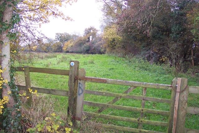 Gate and bridleway