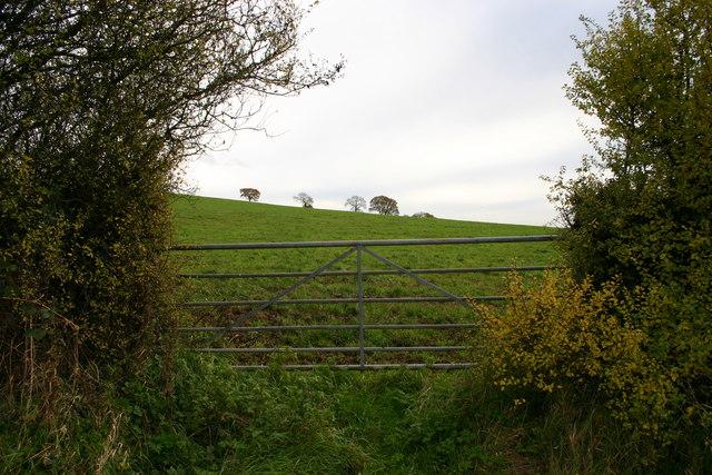 Gateway to Fields