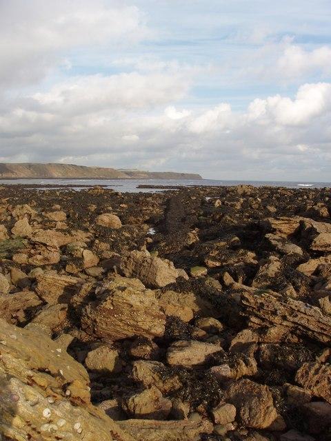 Scalby Ness Rocks