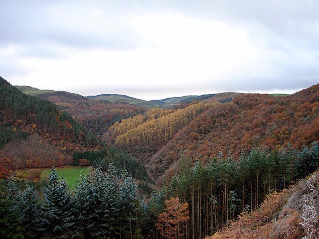The Upper Rheidol Valley