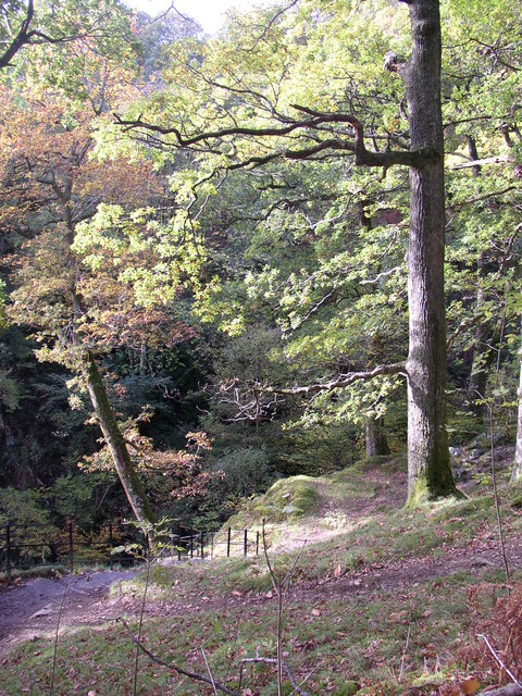 Path down to the upper bridge, Aira Force, Watermillock township, Matterdale CP