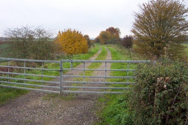 Track on old railway line