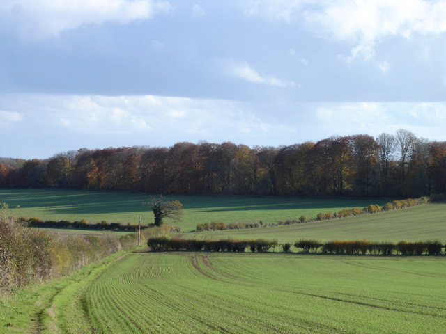 Farmland near Chettle