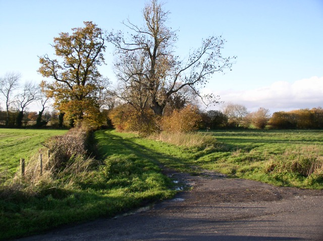 Lane off road between All Cannings and Patney
