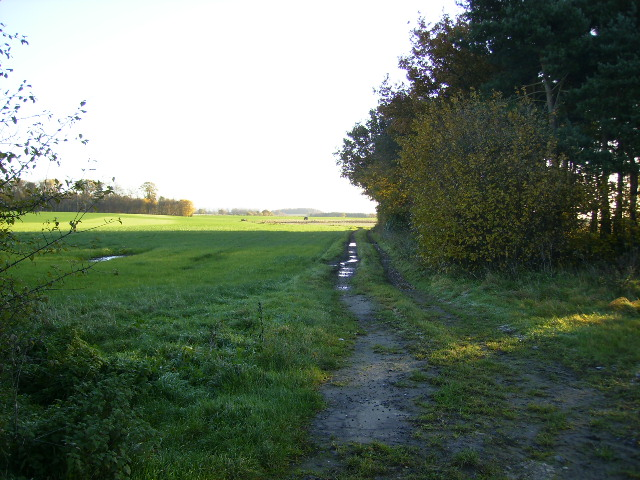 Rough track leading to Gravel Pit Farm