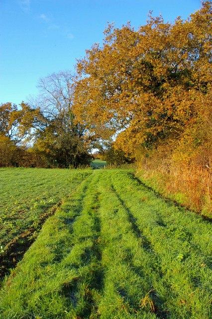 Towards Palmers farm