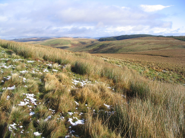 The Western Cheviots