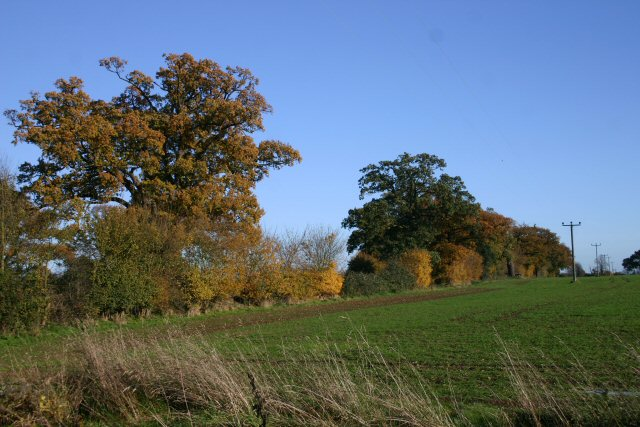Changing colours, Little Saxham