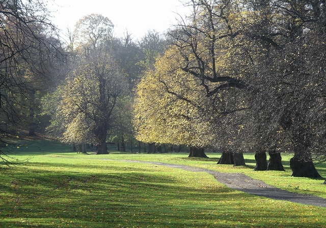 Path, Wollaton Park