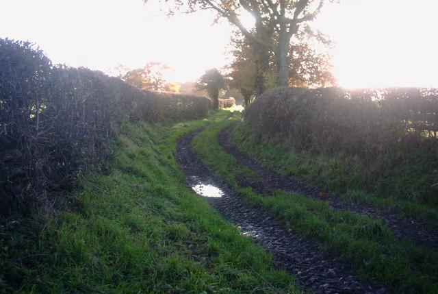 Bridleway near Marston