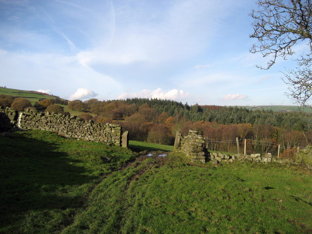 Fields above Loftshaw Gill