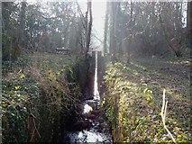 SJ7822 : Oulton lock gates by Roger Dean