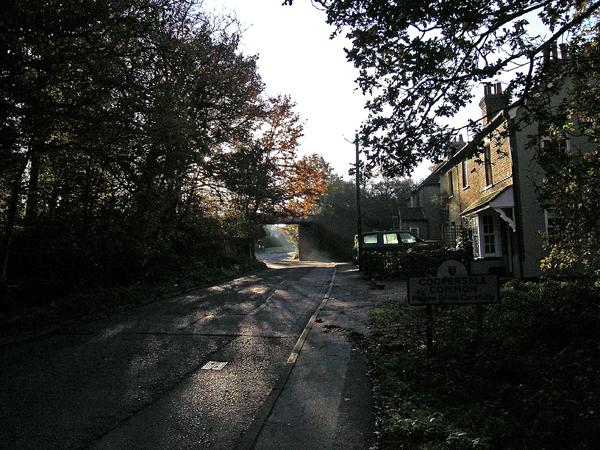 Coopersale Common, looking East towards old railway bridge