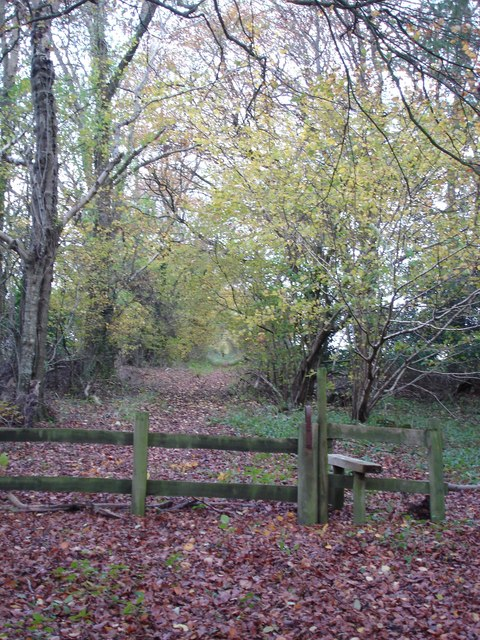 Stile at north end of Stonedown Wood