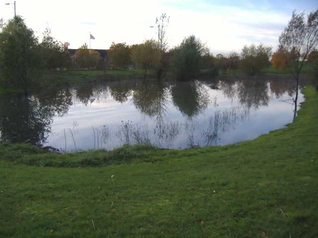 A pond near the A10/A142 roundabout