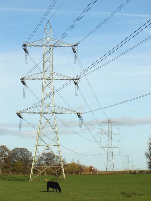 Pylons marching across fields near Nercwys
