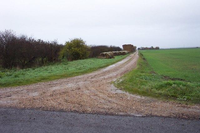Horsehead Drove down to Old Farm
