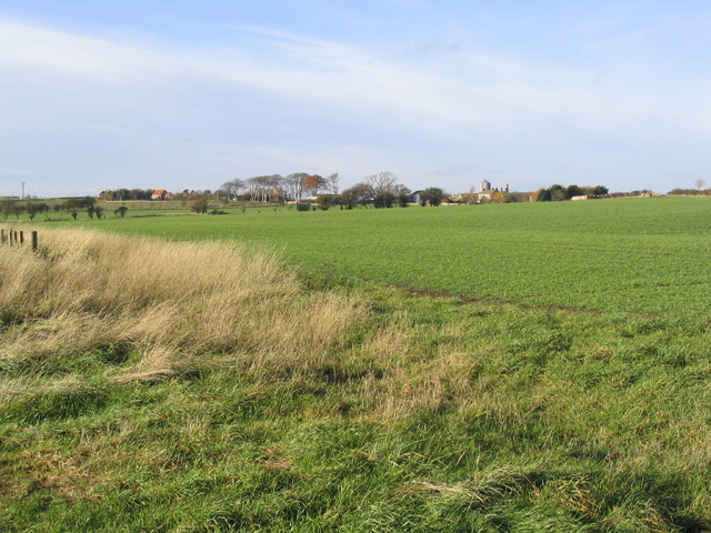 A field at Shoreswood