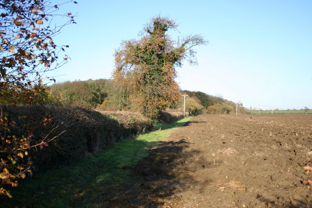 View to Burton Wood