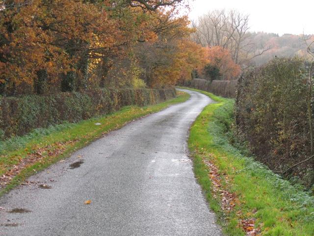 Park Lane, Parkside