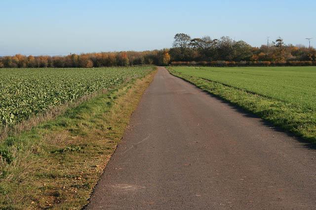 Frieston Heath Lane