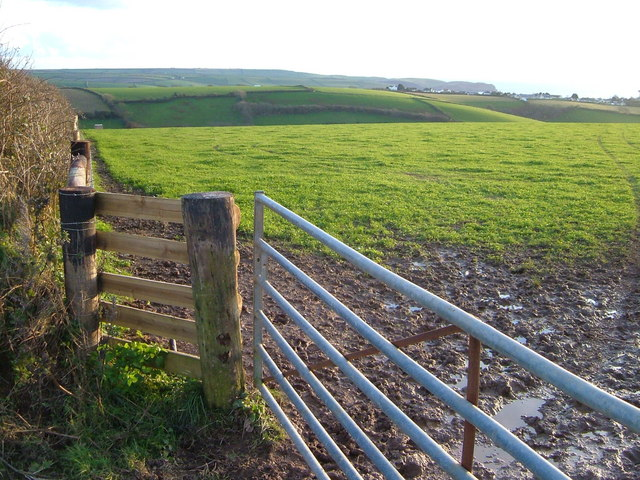Field above Thurlestone