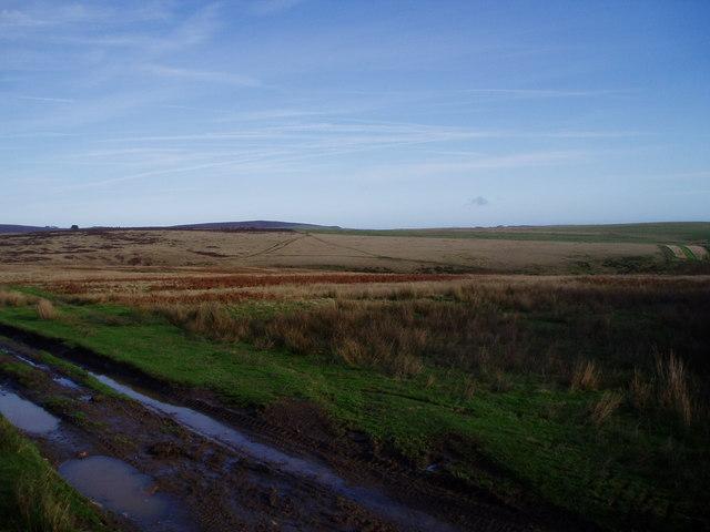 Upper Ceiriog Way
