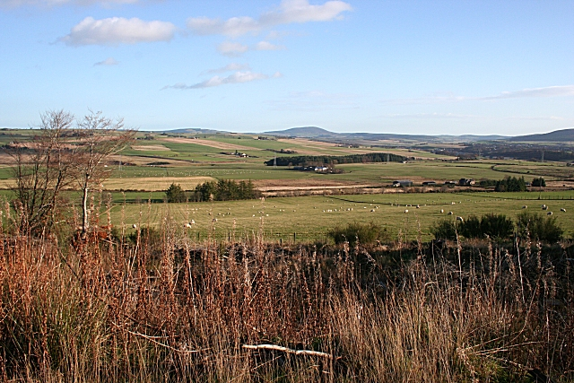 View from Hill of Muldearie