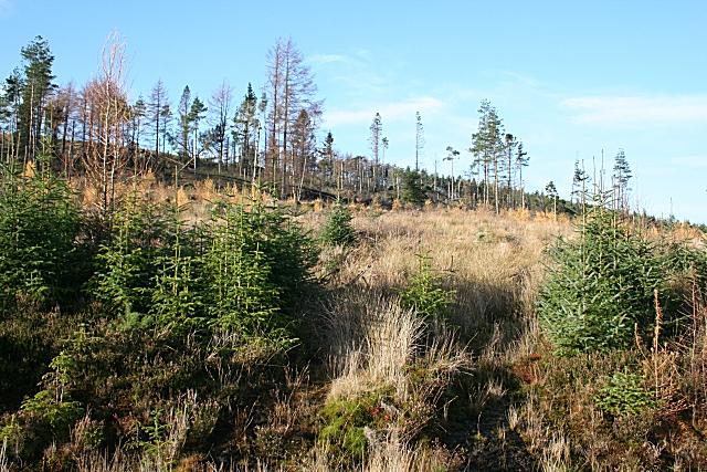 Hill of Muldearie