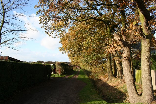 Path by Waterloo Farm