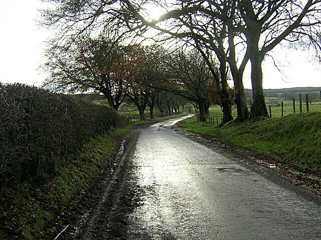 Ardochrig Road Near Skeoch