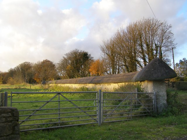 Wall with a thatched roof, West Kennett