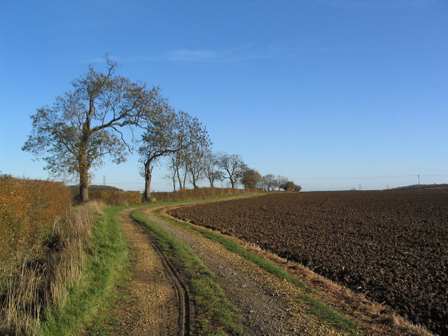 Canner's Lane, further on