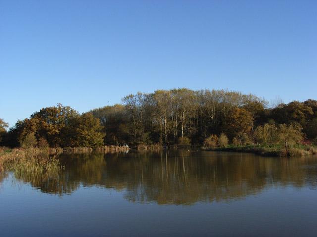 Bowsaw Lake
