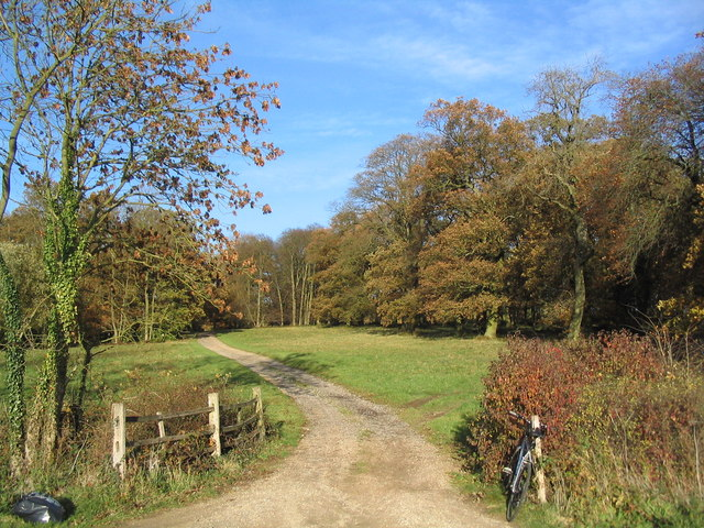 Track into Sleight's Wood from Burton Lane