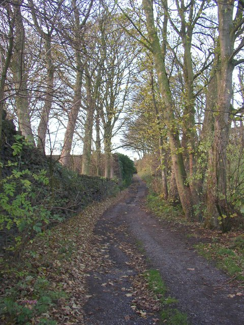 Lane to Cote Hill, Southowram