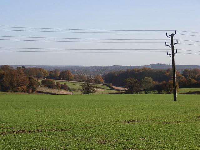 Farmland, Dippenhall