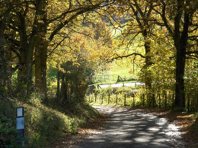 Lane, Lower Old Park
