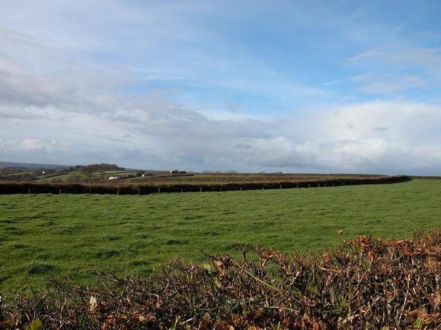 Farmland around Wood Farm
