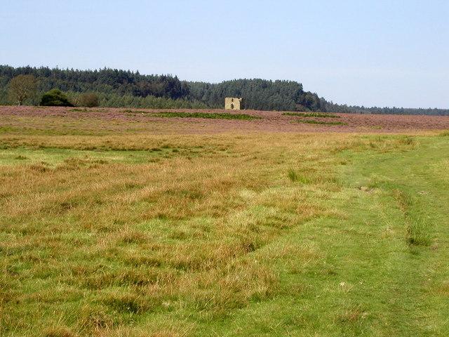 View over Levisham Moor